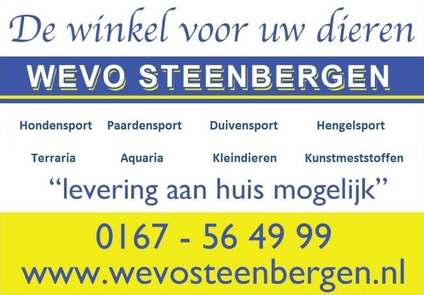 WeVo Steenberrgen